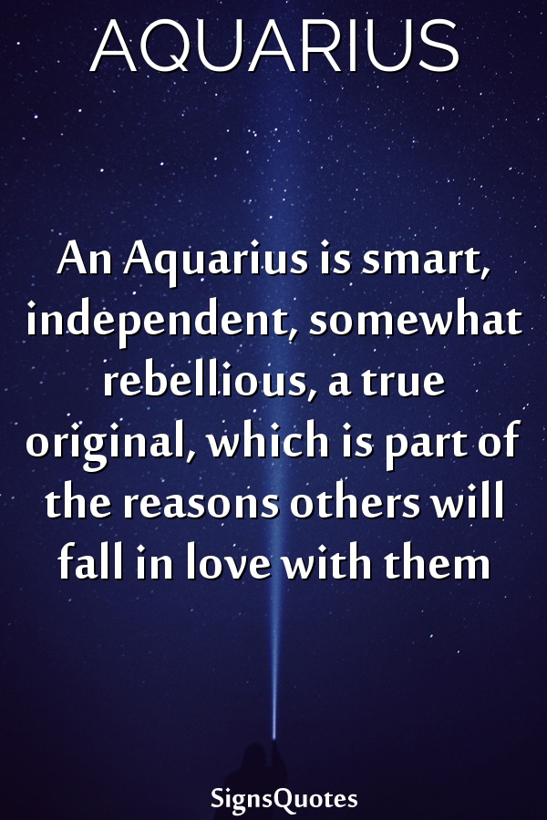 An  Aquarius is smart, independent, somewhat rebellious, a true original, which is part of the reasons others will fall in love with them